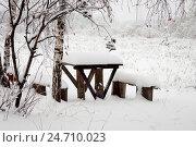 Засыпанные пушистым снегом стол и скамьи на окраине деревни под березой. Стоковое фото, фотограф Наталья Николаева / Фотобанк Лори