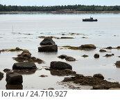 Купить «Берег Белого моря в отлив. Поселок Рабочеостровск близ Кеми. Карелия», фото № 24710927, снято 6 августа 2016 г. (c) Заноза-Ру / Фотобанк Лори