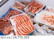 Купить «Chilled Mediterranean seafoods close up on counter», фото № 24715359, снято 24 февраля 2020 г. (c) Яков Филимонов / Фотобанк Лори