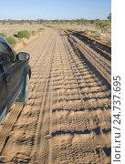 Купить «Corrugations in unsealed outback roads», фото № 24737695, снято 16 октября 2018 г. (c) age Fotostock / Фотобанк Лори