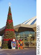 Купить «Новогодняя ёлка возле цирка на проспекте Вернадского», фото № 24755551, снято 20 декабря 2016 г. (c) Павел Москаленко / Фотобанк Лори