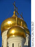 Купить «Благовещенский собор, возведен в 1484-1489 годах. Московский Кремль», эксклюзивное фото № 24755567, снято 20 декабря 2016 г. (c) lana1501 / Фотобанк Лори