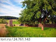 Купить «Agriculture & Food», фото № 24761143, снято 31 мая 2020 г. (c) easy Fotostock / Фотобанк Лори
