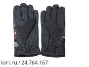 Пара перчаток для охоты и рыбалки на белом фоне. Стоковое фото, фотограф Харкин Вячеслав / Фотобанк Лори