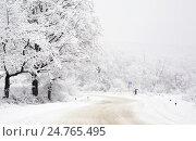 Купить «Снежный день», фото № 24765495, снято 20 декабря 2016 г. (c) Анна Костенко / Фотобанк Лори