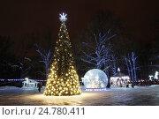Купить «Сказочный лес. Новогодняя иллюминация в парке Л.Н.Толстого в городе Химки.», фото № 24780411, снято 24 декабря 2016 г. (c) Павел Москаленко / Фотобанк Лори