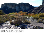 Пустыня Табернас в Испании. Андалусия, провинция Альмерия (2016 год). Стоковое фото, фотограф Alexander Tihonovs / Фотобанк Лори