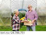senior couple with box of vegetables on farm, фото № 24786751, снято 25 августа 2016 г. (c) Syda Productions / Фотобанк Лори