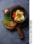 Купить «Рыбный суп», фото № 24795043, снято 29 декабря 2016 г. (c) Лисовская Наталья / Фотобанк Лори