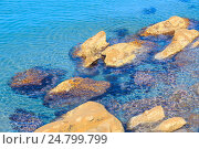 Stones in clear sea water. Стоковое фото, фотограф Юрий Брыкайло / Фотобанк Лори