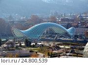 Современная архитектура Тбилиси, Грузия. Мост Мира (2016 год). Стоковое фото, фотограф Светлана Колобова / Фотобанк Лори
