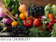 Купить «Набор свежих овощей», фото № 24809071, снято 18 сентября 2016 г. (c) Афанасьева Ольга / Фотобанк Лори