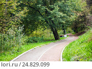 Пустая велосипедная дорожка в парке. Стоковое фото, фотограф Юрий Губин / Фотобанк Лори