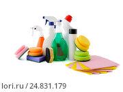 Купить «Различные вспомогательные средства для уборки квартиры. Профессиональная студийная съемка на белом фоне.», фото № 24831179, снято 18 августа 2019 г. (c) Olesya Tseytlin / Фотобанк Лори