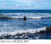Одинокий ныряльщик в гидрокостюме начинает погружение в неспокойное осеннее Черное море. Стоковое фото, фотограф Игорь Кириленко / Фотобанк Лори