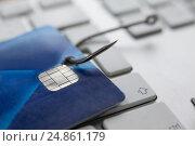 Купить «Credit card in fishing hook on laptop», фото № 24861179, снято 16 августа 2016 г. (c) Wavebreak Media / Фотобанк Лори