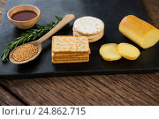 Купить «Cheese, crackers, nacho chips and rosemary herbs on slate plate», фото № 24862715, снято 16 сентября 2016 г. (c) Wavebreak Media / Фотобанк Лори