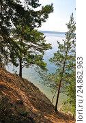 Купить «Сосны на берегу озера Тургояк», фото № 24862963, снято 13 августа 2016 г. (c) Александр Тараканов / Фотобанк Лори