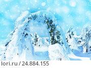 Купить «Красивая страна чудес с деревьями необычной формы», фото № 24884155, снято 14 марта 2015 г. (c) Евгений Ткачёв / Фотобанк Лори