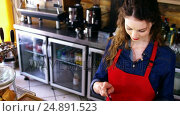Купить «Waitress swiping credit card at counter», видеоролик № 24891523, снято 9 апреля 2020 г. (c) Wavebreak Media / Фотобанк Лори