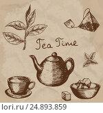 Vector collection of hand drawn tea illustration. Decorative inking vintage tea sketch. Стоковая иллюстрация, иллюстратор Станислав Хомутовский / Фотобанк Лори