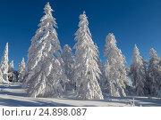Winter in the mountains. Стоковое фото, фотограф Ирина Толокновская / Фотобанк Лори