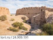 Купить «Руины крепости Кызыл-Кала, Узбекистан, Каракалпакстан», фото № 24909191, снято 21 октября 2016 г. (c) Юлия Бабкина / Фотобанк Лори