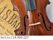 Купить «Немецкая скрипка на фоне нот», фото № 24909227, снято 15 марта 2015 г. (c) Сергей Дрозд / Фотобанк Лори