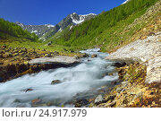 Купить «Spring stream», фото № 24917979, снято 22 июня 2016 г. (c) александр жарников / Фотобанк Лори