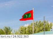 Palm trees and Maldives Flag. Стоковое фото, фотограф Александр Бекишев / Фотобанк Лори