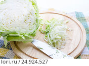 Нашинкованная белокочанная капуста. Стоковое фото, фотограф Дудакова / Фотобанк Лори
