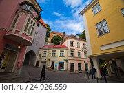 Старый город. Таллин (2013 год). Редакционное фото, фотограф Максим Попыкин / Фотобанк Лори