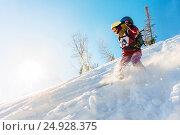 Купить «Freerider girl snowboarder slides from the mountain in the light of the sun», фото № 24928375, снято 9 декабря 2016 г. (c) Zakirov Aleksey / Фотобанк Лори