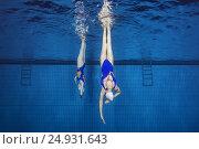 Купить «Underwater view of Synchronized Swimming», фото № 24931643, снято 14 января 2017 г. (c) Некрасов Андрей / Фотобанк Лори