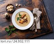 Суп-крем из белых грибов, фото № 24932111, снято 20 января 2017 г. (c) Лисовская Наталья / Фотобанк Лори