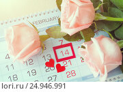 Купить «St Valentines day background in retro tones - roses of light peach color over the calendar with red framed St Valentines day date», фото № 24946991, снято 23 января 2017 г. (c) Зезелина Марина / Фотобанк Лори