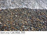 Купить «Морская галька. Крым, Яшмовый пляж на мысе Фиолент», фото № 24958791, снято 13 сентября 2016 г. (c) Ирина Носова / Фотобанк Лори