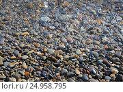 Купить «Разноцветная морская галька. Крым, Яшмовый пляж на мысе Фиолент», фото № 24958795, снято 13 сентября 2016 г. (c) Ирина Носова / Фотобанк Лори