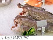 Купить «fresh fish on ice at grocery stall», фото № 24977767, снято 2 ноября 2016 г. (c) Syda Productions / Фотобанк Лори