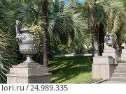 Купить «Природный ландшафтный парк в курортном городе Сочи», фото № 24989335, снято 20 октября 2015 г. (c) виктор химич / Фотобанк Лори