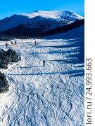 Горнолыжный склон с множеством следов после горнолыжных спусков, фото № 24993663, снято 1 января 2012 г. (c) Эдуард Паравян / Фотобанк Лори