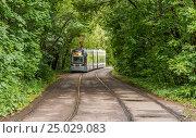 Купить «Городской  трамвай в Москве», фото № 25029083, снято 8 июля 2016 г. (c) Николай Сачков / Фотобанк Лори