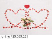 Купить «Two hearts», фото № 25035251, снято 31 января 2017 г. (c) Дмитрий Тищенко / Фотобанк Лори