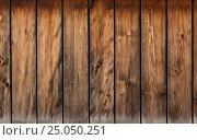 Купить «Wooden planks texture», фото № 25050251, снято 11 мая 2015 г. (c) Дмитрий Кутлаев / Фотобанк Лори