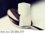Купить «close up of white sugar cubes on teaspoon», фото № 25056371, снято 16 сентября 2015 г. (c) Syda Productions / Фотобанк Лори