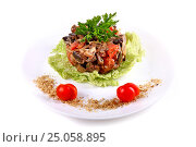 Купить «Salad of mushrooms and tomatoes», фото № 25058895, снято 21 января 2017 г. (c) Art Konovalov / Фотобанк Лори