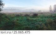 Купить «Осенний пейзаж в Московской области», фото № 25065475, снято 25 сентября 2016 г. (c) Валерий Боярский / Фотобанк Лори