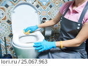 Купить «Cleaning service. woman clean toilet sink», фото № 25067963, снято 2 февраля 2017 г. (c) Дмитрий Калиновский / Фотобанк Лори