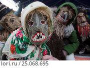 Купить «Ряженые во время празднования Широкой Масленицы в парке города Москвы», фото № 25068695, снято 17 января 2019 г. (c) Николай Винокуров / Фотобанк Лори