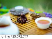 Купить «Чайная церемония, настроение», фото № 25072747, снято 2 августа 2015 г. (c) Дмитрий Сидоров / Фотобанк Лори